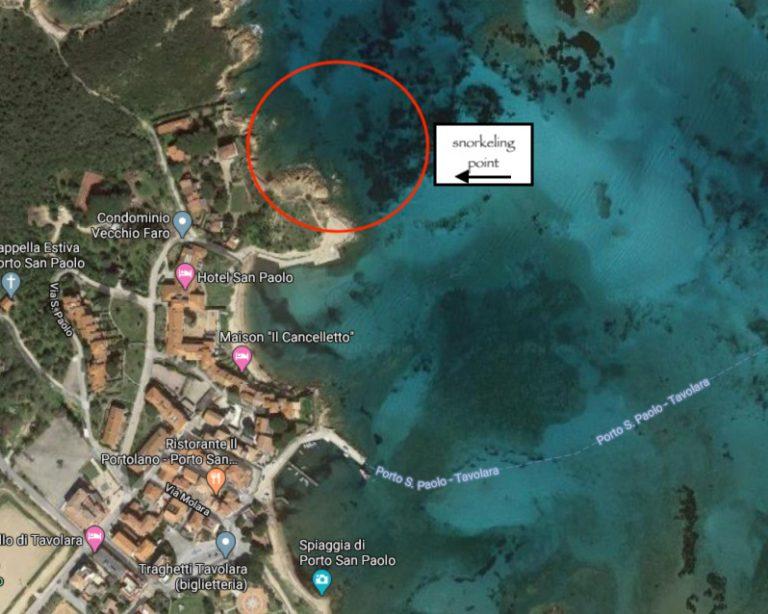 Zona ottima per fare snorkeling
