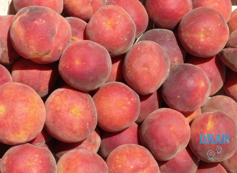 borghi Sardegna e la pesca, il frutto più prodotto a san Sperate