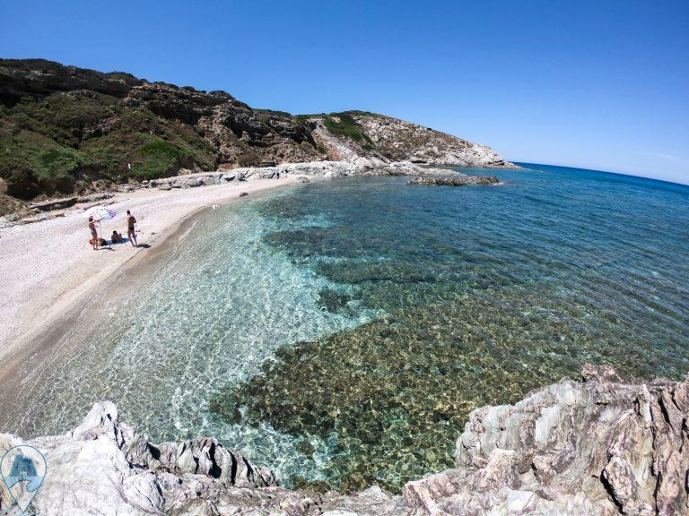 escursioni ad alghero beach taste panorama